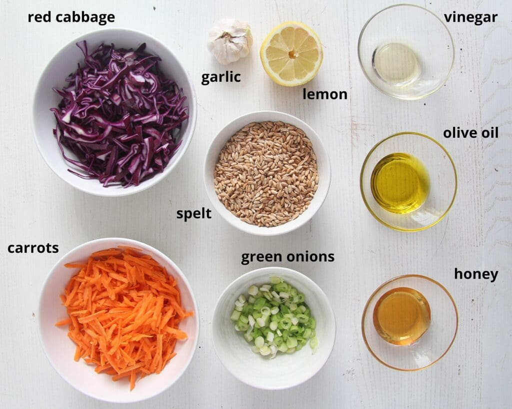 ingredients for salad and dressing