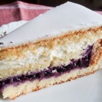 slice of cake with blueberry filling