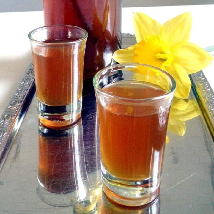 two shot glasses with honey liqueur and a yellow daffodil