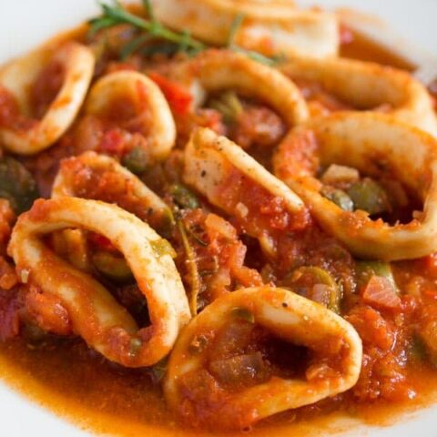 stewed calamari and tomatoes on a plate
