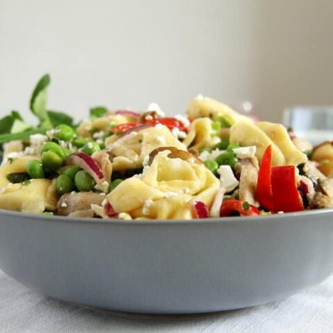 tortellini salad recipes