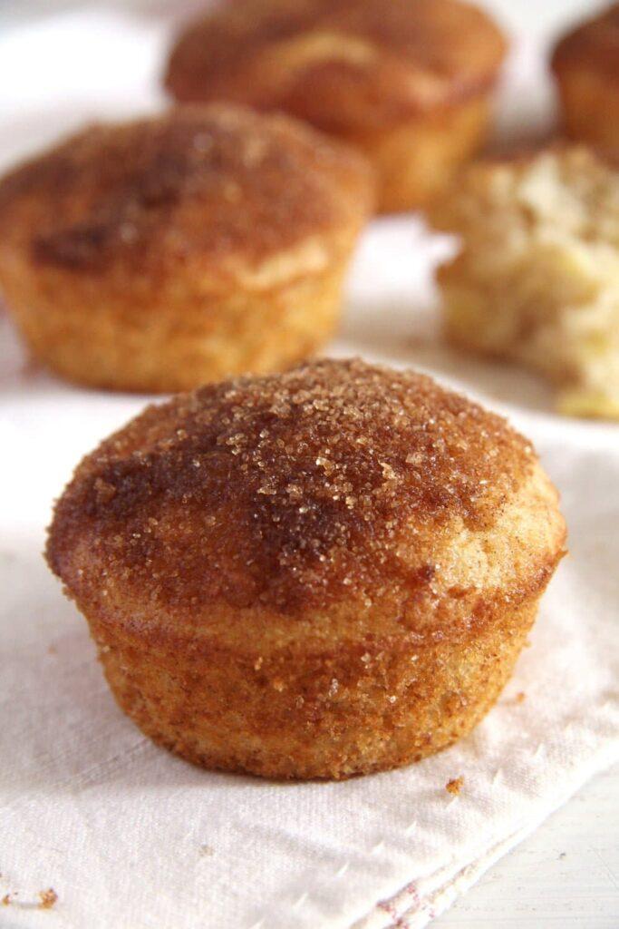 Quick Apple Cinnamon Doughnut Muffins