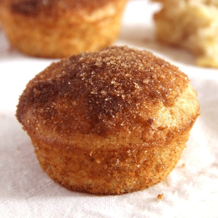 Cinnamon Muffin Recipe (Donut Muffins)