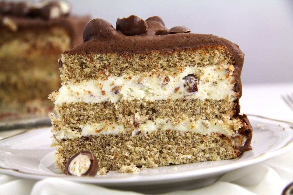close up slice of cake with hazelnuts and frosting
