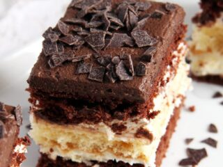 chocolate vanilla cake piece close up