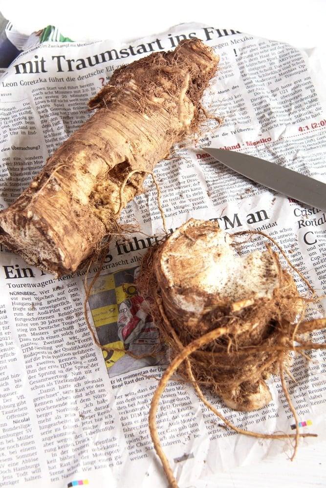 horseradish root for homemade horseradish