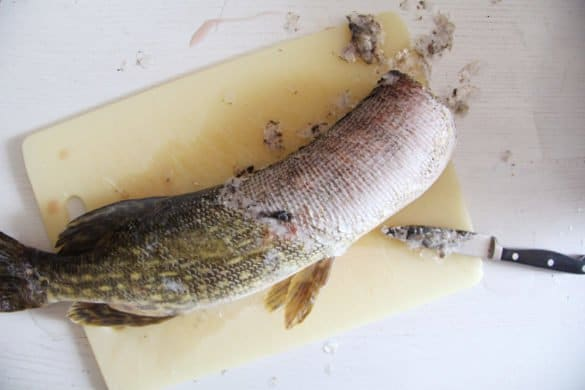 IMG 4057 585x390 Oven Baked Pike with Vegetables and White Wine – Romanian Recipe