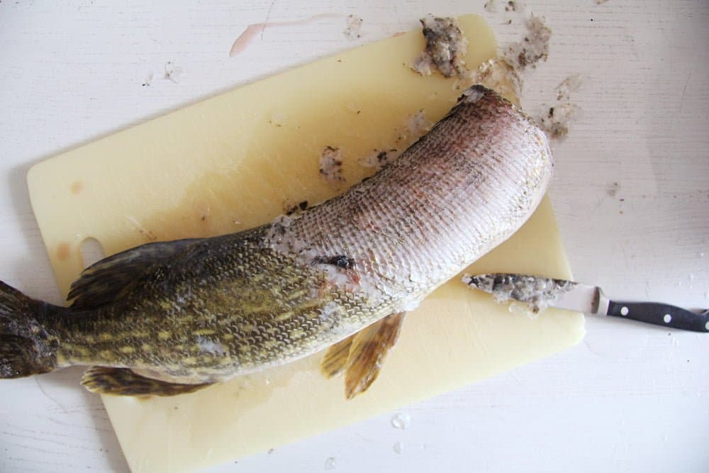 scaling a fish on a cutting board