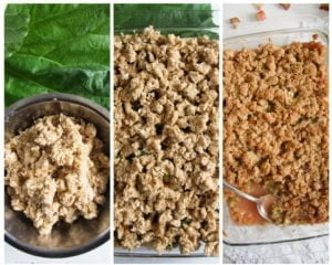 rhubarb crisp 11 300x240 Rhubarb Crisp with Apples and Crunchy Oatmeal Topping