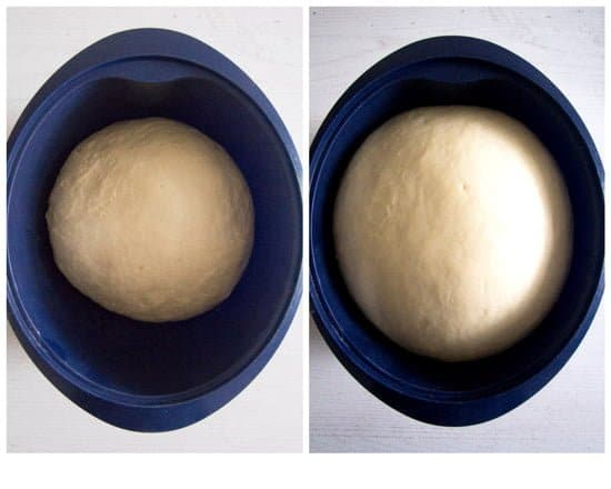yeast dough before and after rising