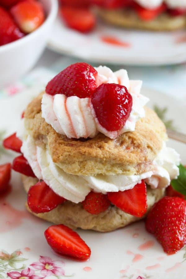 strawberry shortcake 8 Strawberry Shortcake – Classic Recipe with Strawberries and Cream