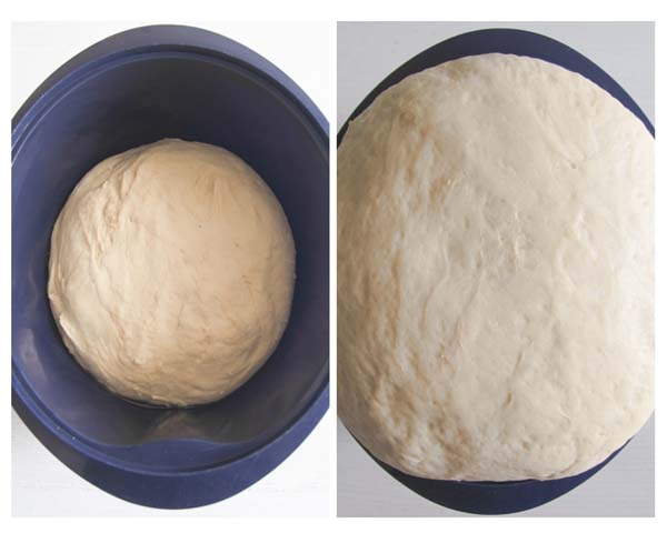 dough for dinner rolls