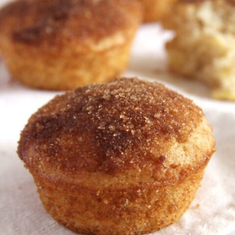 muffins with apples and spices