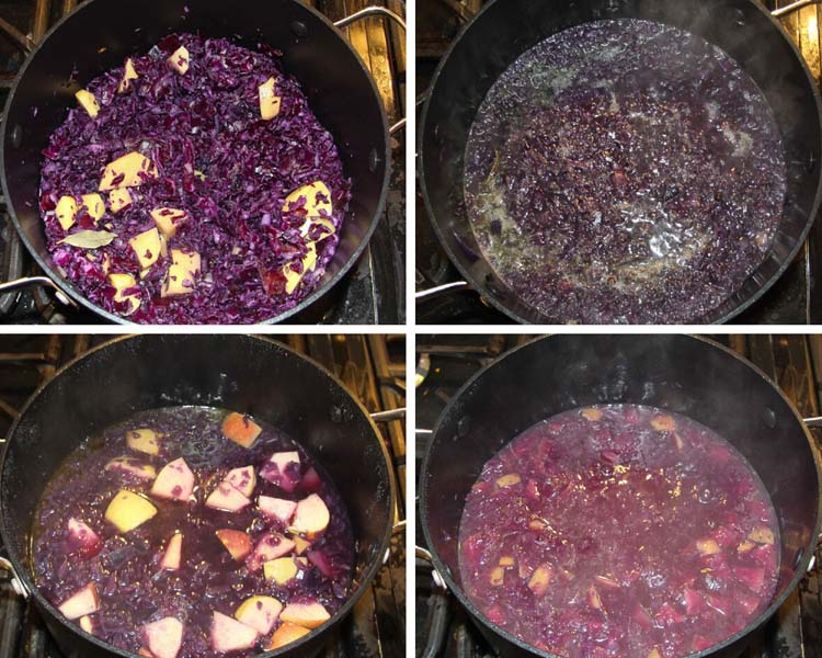 make red cabbage soup step by step