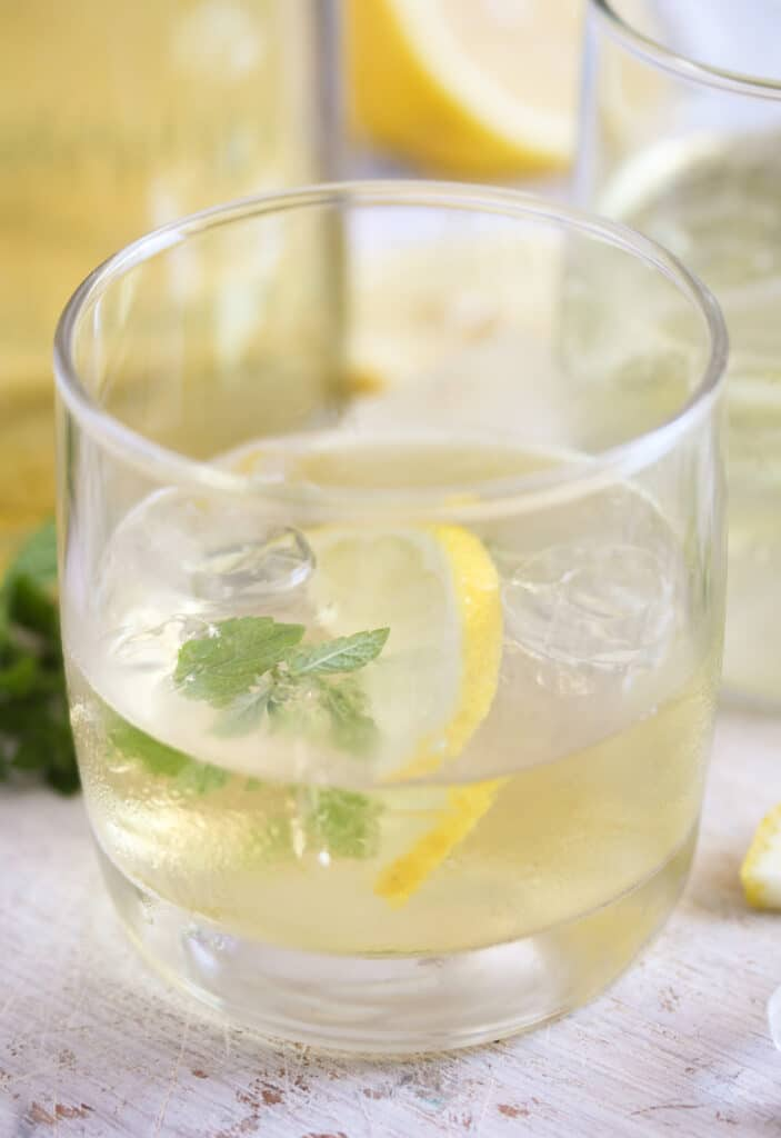 gin with lemon on the rocks