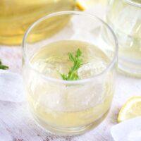 glass with elderflower gin on ice