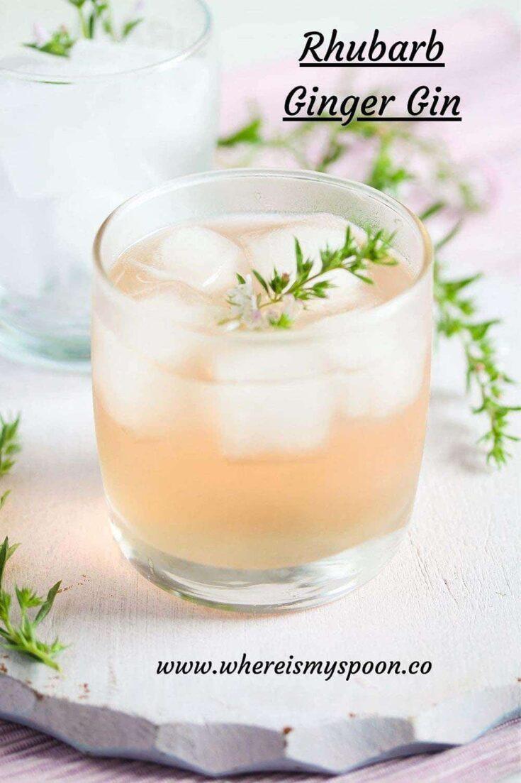 rhubarb and ginger gin, Rhubarb and Ginger Gin
