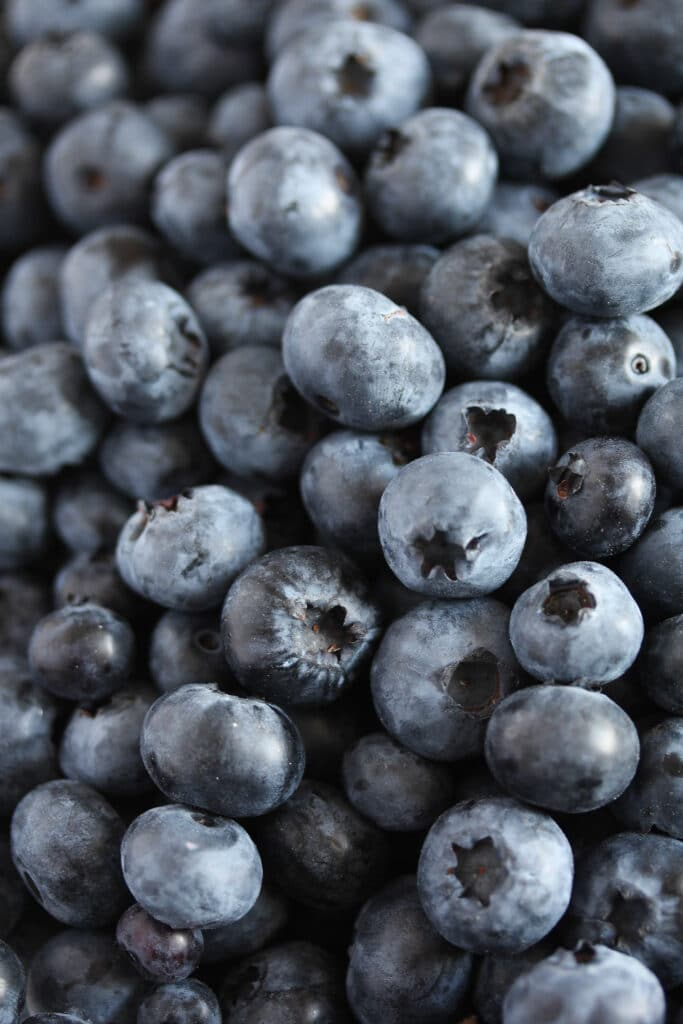 canning blueberries, Canning Blueberries