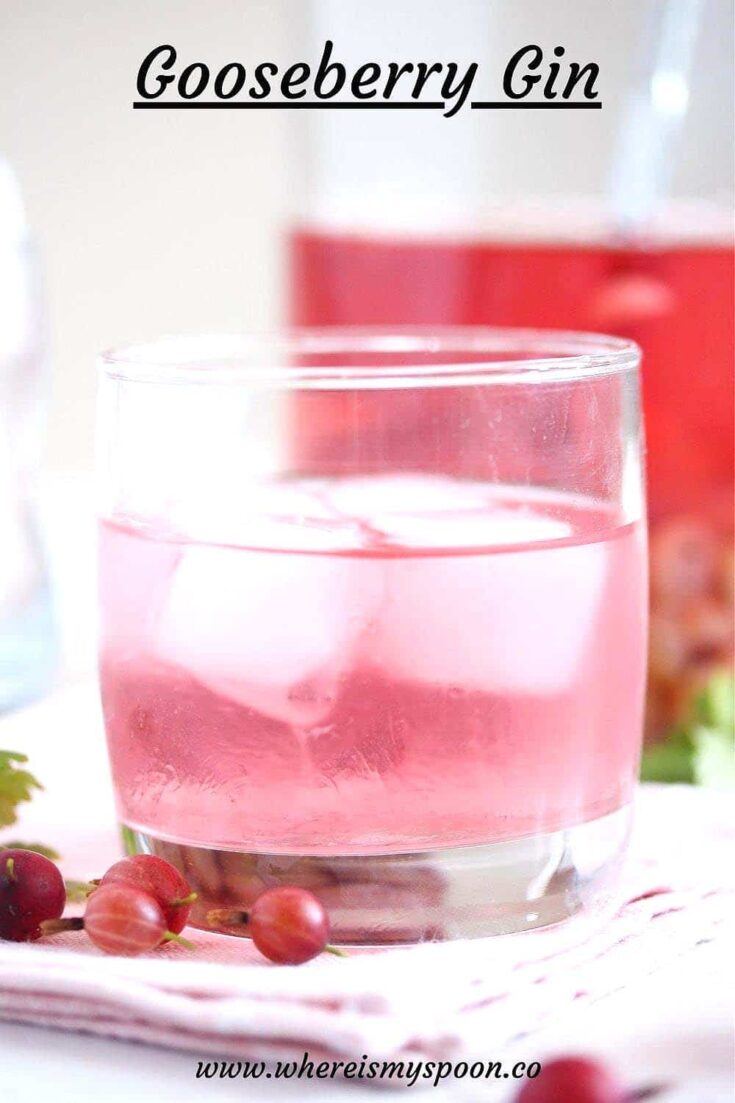 gooseberry gin, Gooseberry Gin