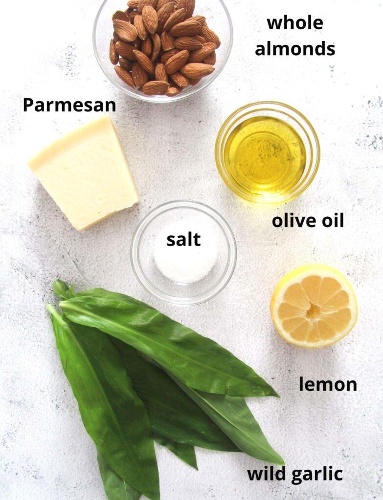 ingredients for making pasta with pesto.