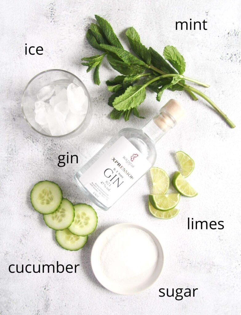 bottle of gin, ice, sugar, mint, cucumber, limes on the table.