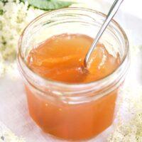 elderflower jelly with apple juice in a small jar.