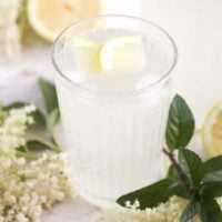 elderflower champagne in a glass with lemon slices and flowers around it.