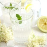 elderflower gin cocktail in a long glass, lemon and flowers around it.