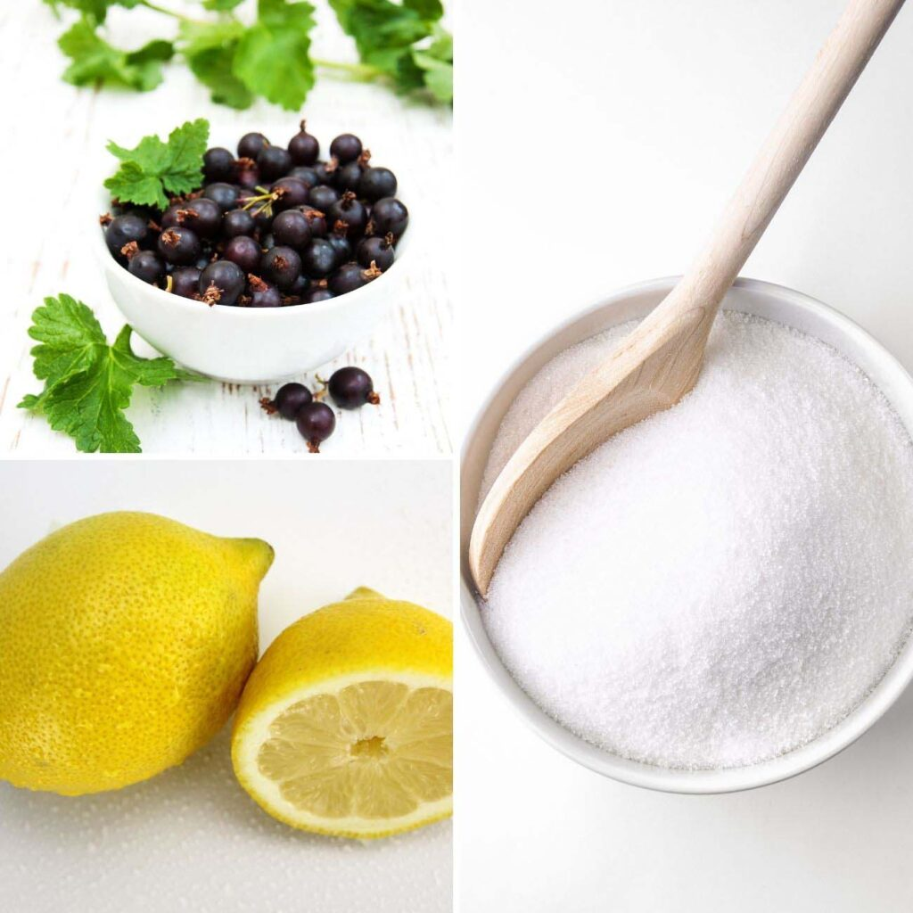 black currants in a bowl, a lemon and a bowl of sugar.
