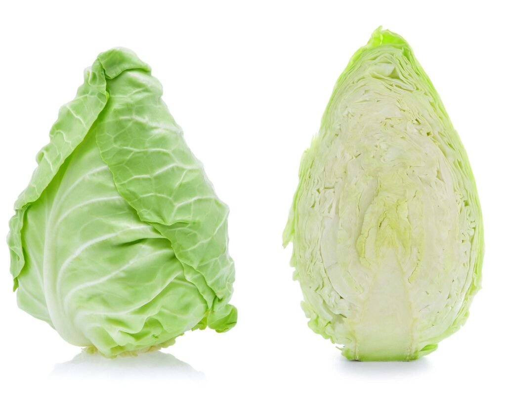 fresh pointed cabbage whole and halved on a white background.